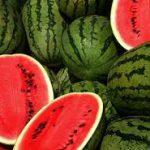 افزایش قیمت هندوانه در بازار مشهد منطقی نیست/ ذخیرهسازی ۵۶۰۰ تُن شکر و برنج