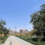 معاون خدمات و محیط زیست شهری شهرداری مشهد عنوان کرد: ایجاد ۳۸۰۰ مترمربع فضای سبز جدید در منطقه ثامن