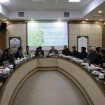 همزمان با ایام دهه فجر و روز جهانی مبارزه با سرطان؛ همایش دوچرخه سواری در مشهد برگزار می شود