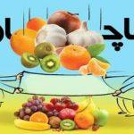 امحاء ۱۴۰ تن میوه قاچاق در خراسانرضوی