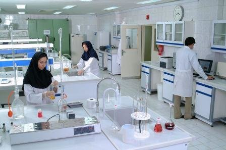 دانش بنیان مشهد