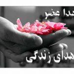 اهدا اعضای جوان مشهدی به چهار بیمار