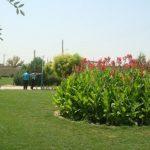 از ابتدای سال جاری انجام شد؛ کاشت ۱۵۹ هزار بوته گل فصلی و دائمی در منطقه ۴