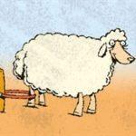 ۱۳۰ راس گوسفند در تایباد دزدیده شد!
