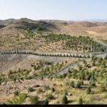 با نگاه صرفه جویی در مدیریت آب صورت گرفت: استفاده از ۲۹ گونه کم آب و مناسب اقلیم در ارتفاعات کمربند سبز